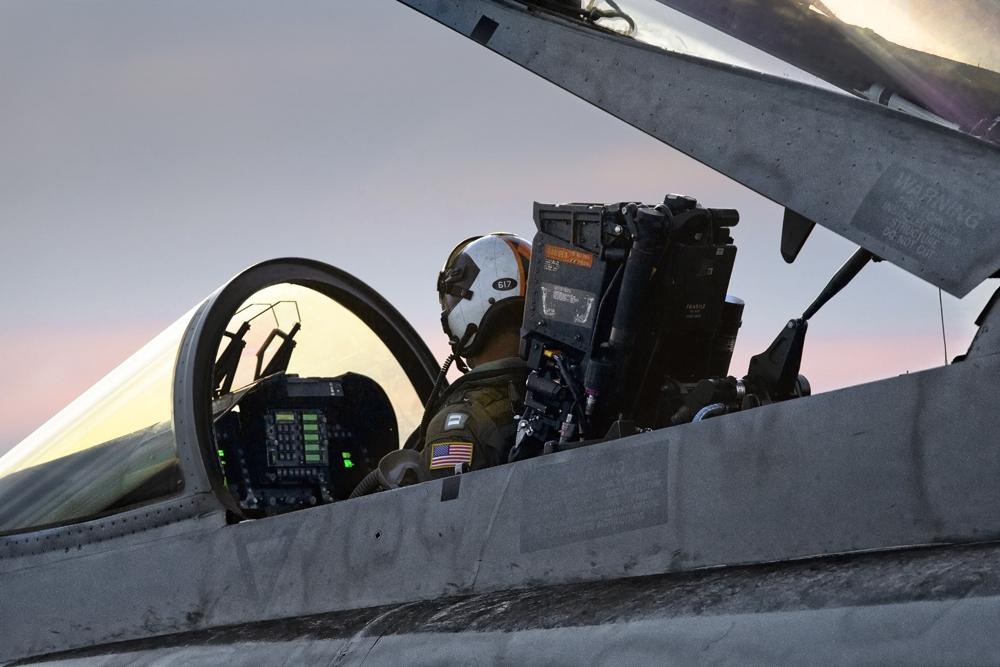 IMAGE: http://markfingar.com/photogallery/Aircraft/HornetSunset.jpg
