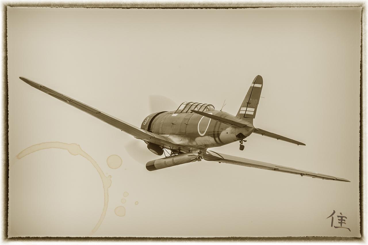 IMAGE: http://markfingar.com/photogallery/Aircraft/MAM_2017/Kate_Birdie.jpg