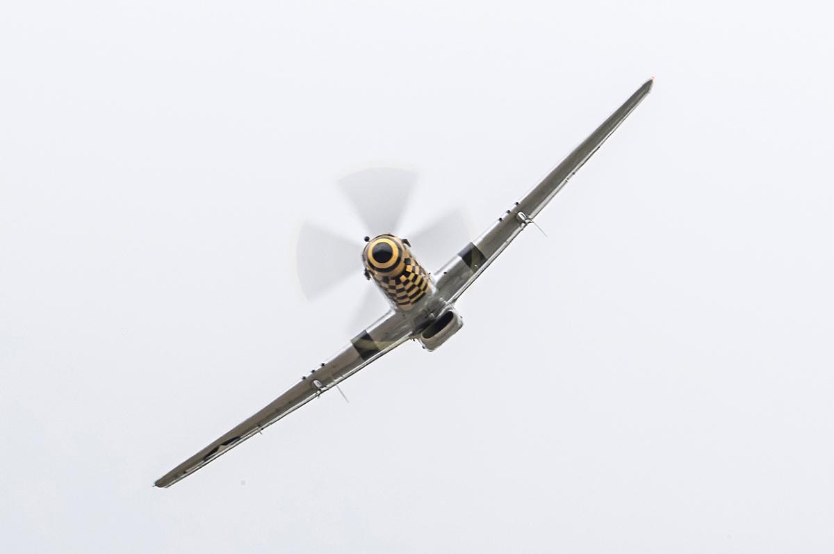 IMAGE: http://markfingar.com/photogallery/Aircraft/MAM_2017/P51-5.jpg