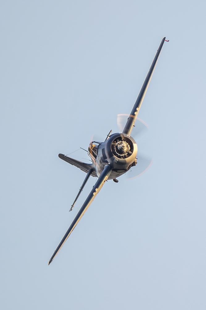 IMAGE: http://markfingar.com/photogallery/Aircraft/MAM_WOTB_2016/Proms/Cat-ff.jpg