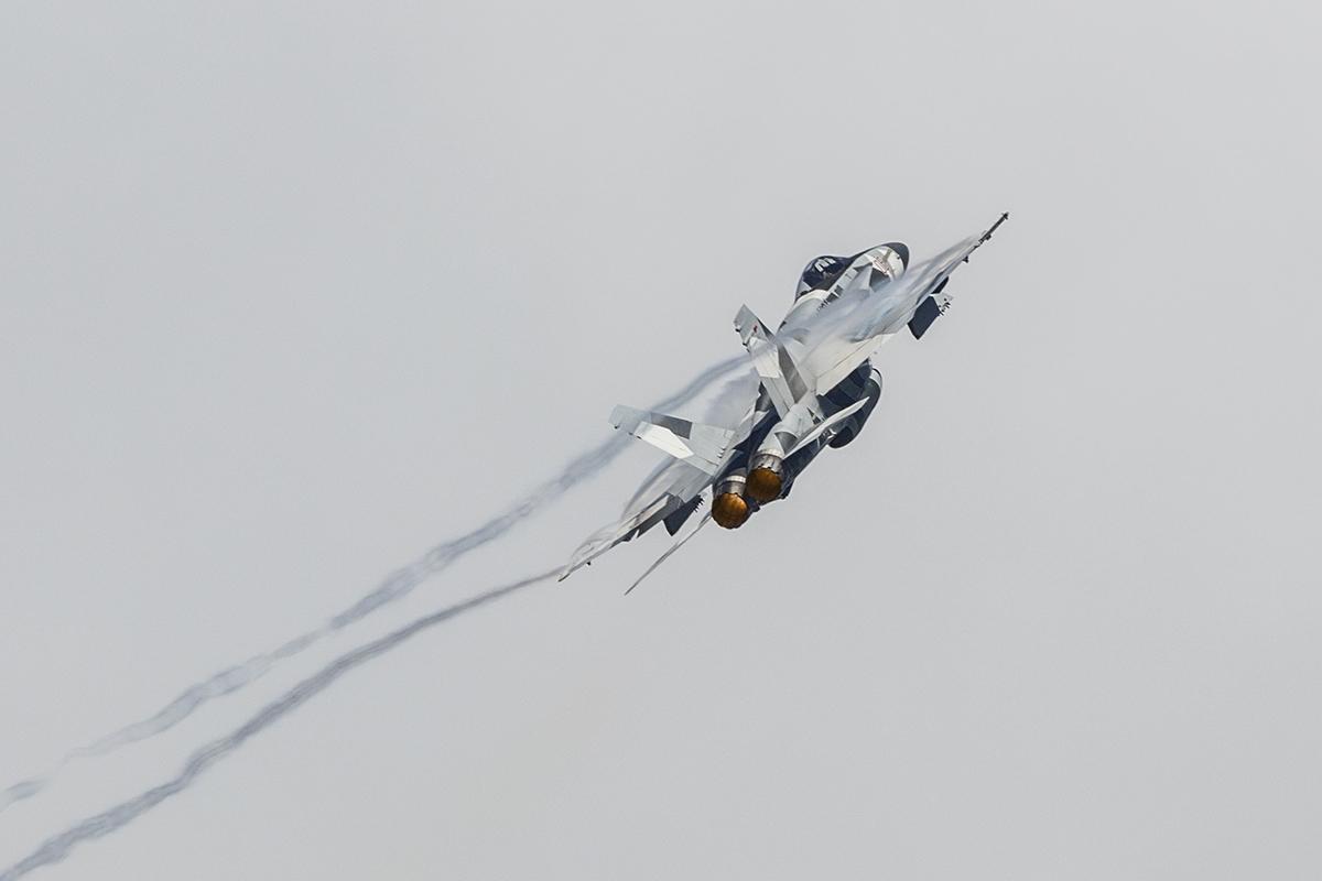 IMAGE: http://markfingar.com/photogallery/Aircraft/OCEANA_2015/5I6A5363.JPG
