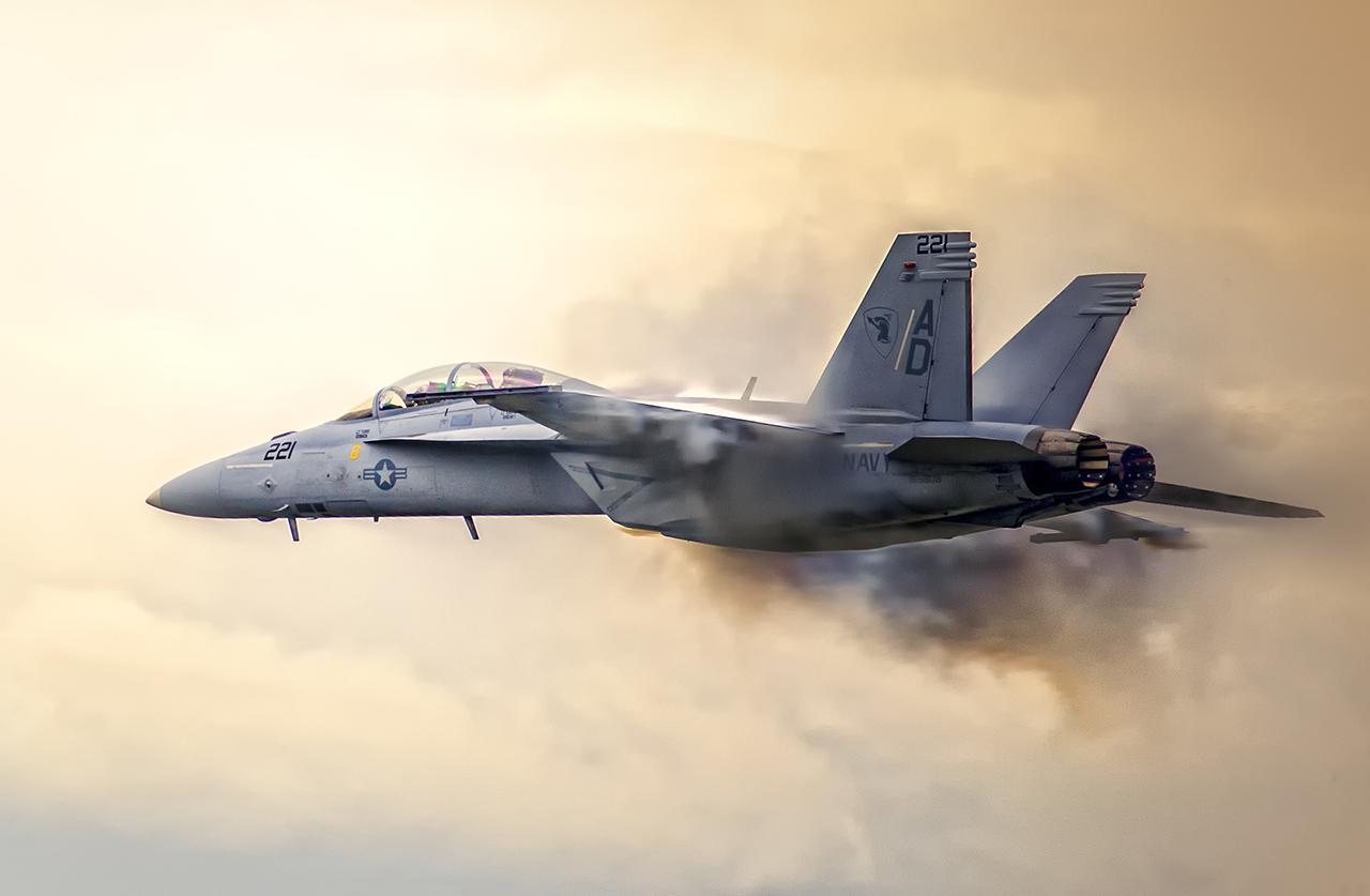 IMAGE: http://markfingar.com/photogallery/Aircraft/OCEANA_2016/F18SSPass.jpg