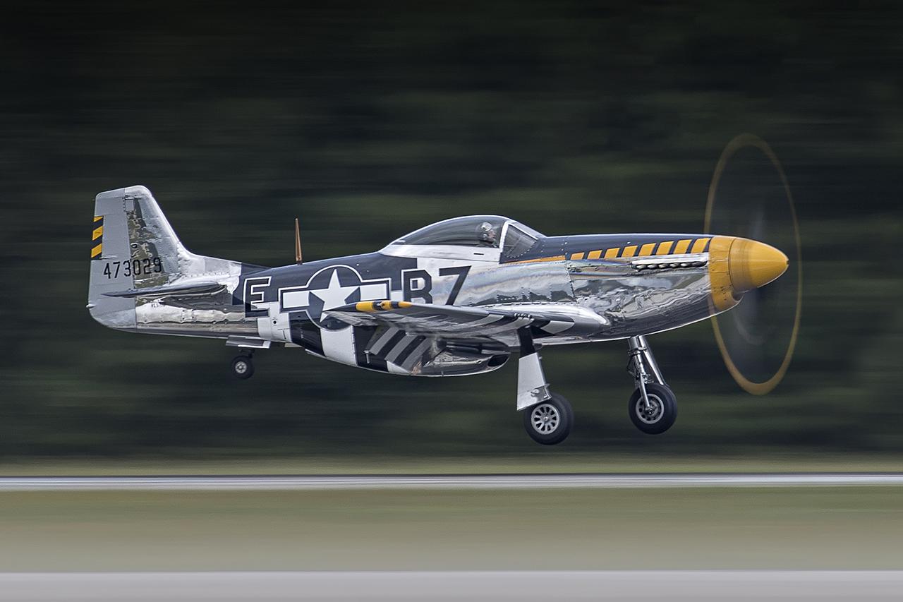 IMAGE: http://markfingar.com/photogallery/Aircraft/OCEANA_2017/BaldEagle-1_lr.jpg