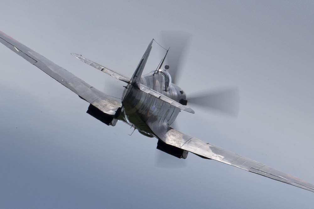 IMAGE: http://markfingar.com/photogallery/Aircraft/VAWB2014/VAWBSpit_FB-1.jpg